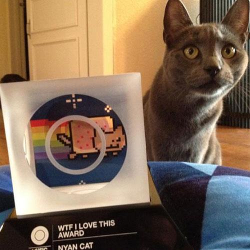 Nyan-Cat-Award